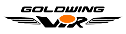 logo-Goldwingvir-copia